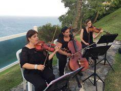Violines Frenesi  Performing a Destination Wedding at Hotel Conquistador, Fajardo, Puerto Rico