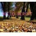 Hello herfst. Tot ziens zomer. Je was gezellig!