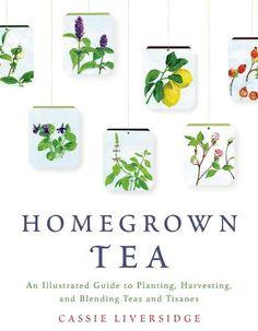 Grow Tea. Interview with Homegrown Tea Author Cassie Liversidge.