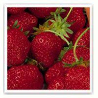 Choisir les fraises