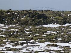 Ice, moss, rocks, steam. Icelandic landscate, outskirts of Reykjavik, south.