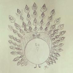 Peacock sketch. Pencil illustration