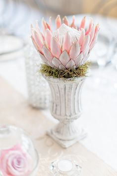 Pink, blush and cream wedding reception table details with stunning King Protea // Lightburst Photography Protea Wedding, Wedding Reception Flowers, Wedding Table, Floral Wedding, Wedding Bouquets, Protea Centerpiece, Shabby Chic Centerpieces, Wedding Centerpieces, Wedding Decorations