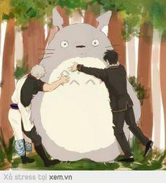 Gin Tama, Tonari no Totoro, Sakata Gintoki, Totoro, Hijikata Toushirou All Anime, Anime Guys, Manga Anime, Anime Art, Anime Crossover, Comedy Anime, Okikagu, My Neighbor Totoro, Asuna