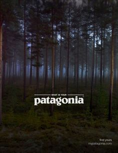 PATAGONIA ADS - Google Search