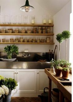 potting shed shelves and sink
