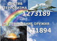 Основной альбом – 163 фотографии | ВКонтакте
