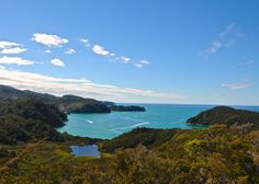 Abel Tasman Coast Track | 22 New Zealand Hikes You Need To Do Before You Die