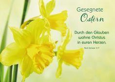 Poster, Plants, Pentecost, Prayer, Postcards, Plant, Billboard, Planets