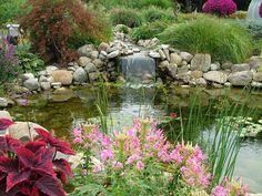 Lets Rock Fabulous Rock Garden Design Ideas Rock Garden - Lets rock 20 fabulous rock garden design ideas