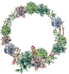Find Watercolor Succulent Berries Wreath Hand Painted stock images in HD and millions of other royalty-free stock photos, illustrations and vectors in the Shutterstock collection. Watercolor Succulents, Watercolor Flowers, Watercolor Paintings, Wreath Watercolor, Watercolor Christmas, Illustration Blume, Berry Wreath, Decoupage Vintage, Flower Clipart