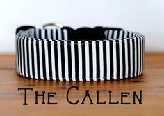 "Modern Chic Classic Thin Black & White Stripe Dog Collar ""The Callen"""
