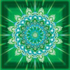 Kapcsolódó kép Floral, Flowers, Mandalas, Royal Icing Flowers, Flower, Flower, Florals, Blossoms
