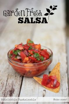 Remember these 5 ingredients and you'll never need a salsa recipe again. This fresh from the garden salsa is a winner, whether you serve it with chips or over your favorite Mexican meal.