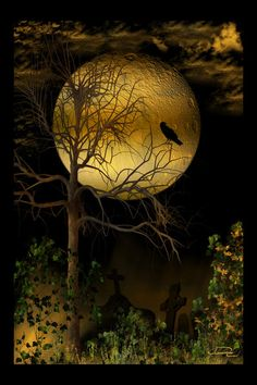 Crow and the Harvest Moon - Очень сочно Moon Shadow, Sombra Lunar, Crows Drawing, Shoot The Moon, Moon Pictures, Sun And Stars, Moon Magic, Beautiful Moon, Harvest Moon