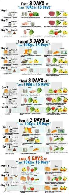 Dieta 15 dias