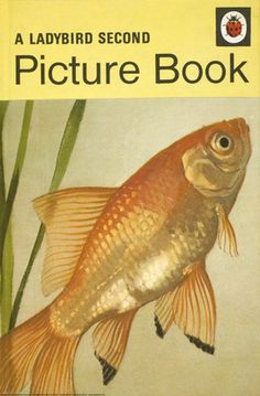 1970 'A Ladybird Second Picture Book' illustrated by Harry Wingfield 1970s Childhood, My Childhood Memories, Childhood Toys, Spot Books, I Love Books, My Books, Vintage Book Covers, Vintage Children's Books, Ladybird Books