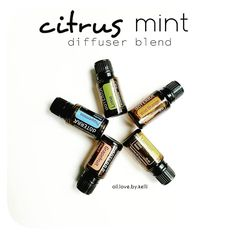 Citrus Mint Diffuser Blend    When picking out a diffuser blend in the morning, I usually tend to go for citrus oils and they pair nicely with the mints. I really like this blend: Wild Orange, Lemon, Lime, Grapefruit and Peppermint. Its a cool greyish overcast day here today and this blend is clean and fresh ❤ The citrus oils cleanse and purify the air and the Peppermint &  Lemon combo is helping with thedrip caused by seasonal threats.