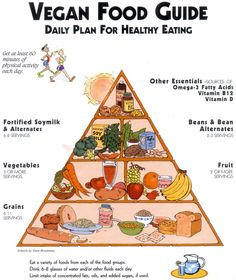 Vegan food pyramid :)