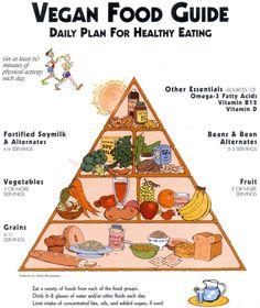 Vegan food pyramid :) I'm healthy and I know it!!