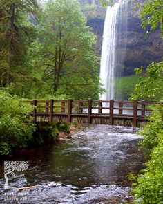 Silver Falls, Oregon. 2 little old ladies leaving told me that this is Oregon's most beautiful park. It's pretty untouched-I'd have to agree.