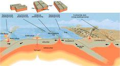 Tektoniek