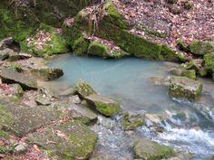 lovely brook