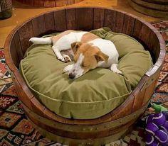Cute idea for a DIY dog bed!