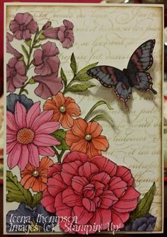 A Stampin' Up! Butterfly Cards, Flower Cards, Handmade Birthday Cards, Greeting Cards Handmade, Scrapbook Cards, Scrapbooking, Horse Cards, Corner Garden, Floral Card