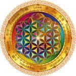 Flower of Life Window Sticker - dark by Lilyas
