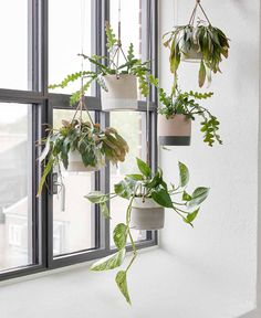 Hanging plants helps create coziness with Hübsch Planters png C. Hanging plants he Diy Hanging Planter, Hanging Herbs, Window Hanging, Hanging Planters, Planter Ideas, Hanging Baskets, Plant Wall, Plant Decor, Plant Pots