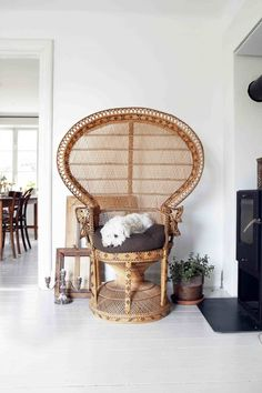Snug decor bedroom ideas to attempt for nice, room info number 2084363289 Living Room Chairs, Interior Design Living Room, Interior Decorating, Decorating Ideas, Wicker Peacock Chair, Boho Lounge, Bamboo Furniture, Sweet Home, Scandinavian Interior Design