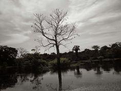 Autazes, AM, Brasil