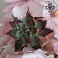Striking sugar succulent peeking out between the petals of a sugar cosmos flower Sugar Flowers, How To Make Cake, Cake Designs, Cosmos, Succulents, Plants, Cake Templates, Outer Space, Flora
