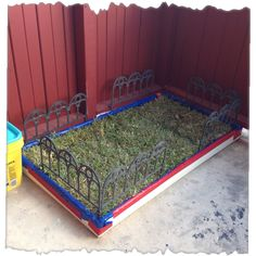 DIY apartment patio yard great for dogs! Love the fence idea. Keep munchkins out of the dogs space.