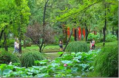 Dream Gardens: Humble Administrator's Garden, Suzhou China - Home Ever After - Home Ever After