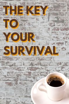 Coffee: the key to your survival.  #coffeequotes  MommyOfManyHats.com Best Mom Quotes, Expensive Coffee, Best Beans, Freezer Burn, Tired Mom, Small Bars, Coffee Branding, Coffee Is Life, Coffee Drinkers