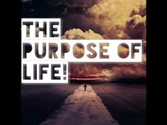 What Is The Purpose Of Life? (This Will Answer So Many Questions!)    Pay Attention  Knowledge is POWER