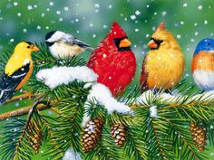 4 Cardinal Birds Christmas Holidays Greeting Notecards/ Envelopes Set.  via Etsy.