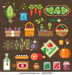 Fresh vegetables from the garden. Cook wholesome food for vegetarians. Vector flat illustration
