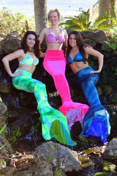 Weeki Wachee Springs State Park would like to welcome ...