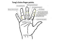 Image result for master tung wood finger