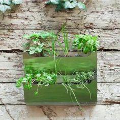 Cedar Herb Garden