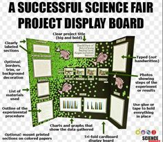 Mastering the Project Display Board / Tips for Putting Together a Science Fair Display Board Science Fair Display Board, Science Project Board, Science Fair Projects Boards, School Science Projects, Stem Projects, Science Experiments Kids, Science For Kids, Science Activities, Science Boards