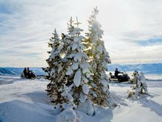 Want an adrenaline rush? Zoom through the mountains and rip through powdery snow on a snowmobile tour! >> http://www.frontdoor.com/photos/lake-tahoe-adventures?soc=pindhm