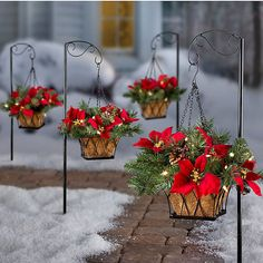 Pre-Lit Poinsettia Christmas Greenery Walkway Hanging Basket ($50) ❤ liked on Polyvore featuring home, home decor, holiday decorations, christmas holiday decor, christmas holiday decorations, door hooks, chain hooks and holiday door decorations