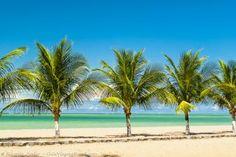 Praia de Japaratinga, no Alagoas. Conheça as melhores praias do Brasil >>> http://www.guiaviagensbrasil.com/blog/category/melhores-praias/