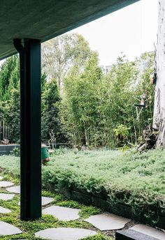'Not your standard Melbourne garden' was the challenging brief for this striking Melbourne hideaway — a vision of soft, textured grasses without any mowable lawn. Melbourne Garden, Low Growing Shrubs, Bamboo Screening, Crazy Paving, Snow Maiden, Japanese Maple, Grasses, Season Colors, Lawn