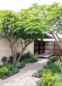 - Rustic Small Backyard Design Ideas With Vertical Garden To Try Asap Small Backyard Gardens, Small Backyard Landscaping, Backyard Garden Design, Small Garden Design, Small Gardens, Vertical Gardens, Landscaping Ideas, Small Patio, Backyard Trees