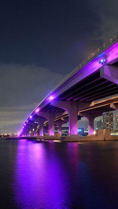 This bridge was soo pretty at night! I love Miami! Miami Beach, Miami Florida, South Florida, Florida Living, Miami City, Downtown Miami, Beautiful Places, Beautiful Pictures, Cities